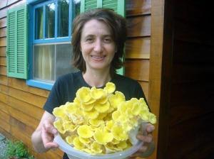 colheira de amarelo